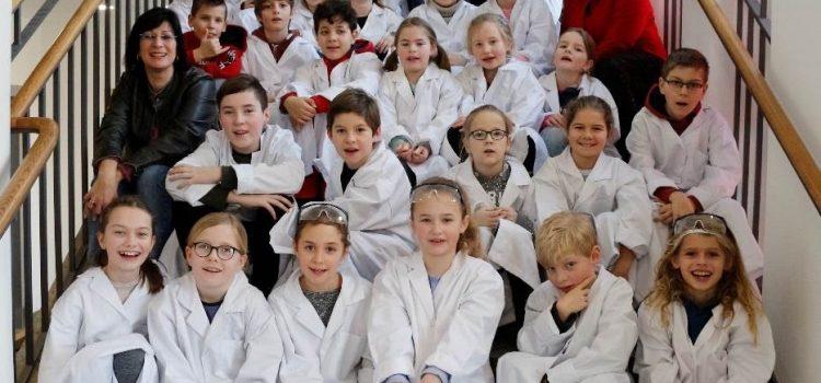 MINT-Forscher besuchen die Maria-Ward-Schule