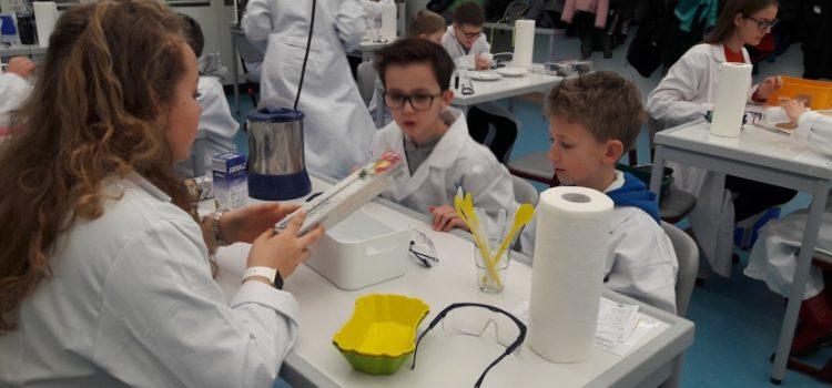 MINT-Besuch: Die Klasse 4a experimentiert in der Maria-Ward-Schule