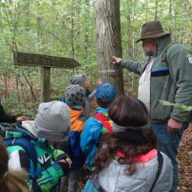 Die Klasse 3a im Guttenberger Wald