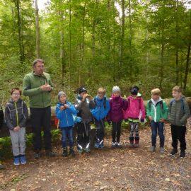 Waldtag der Klasse 3b